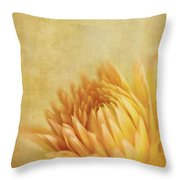 Autumn Delight Throw Pillow by Beve Brown-Clark Photography