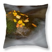 Autumn Detail Throw Pillow