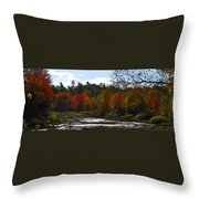 Autumn Dreaming Adwc Throw Pillow