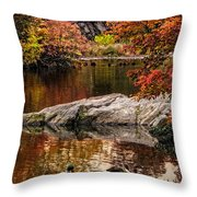Autumn Duck Couple Throw Pillow