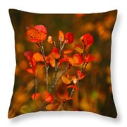 Autumn Emblem Throw Pillow