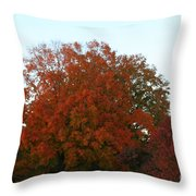 Autumn Eve Throw Pillow