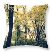 Autumn Evening Throw Pillow