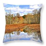 Autumn Fades Throw Pillow