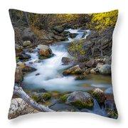 Autumn Fall Bend Throw Pillow