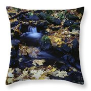 Autumn Fall Colors Starvation Creek State Park Throw Pillow