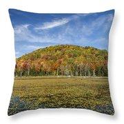Serene Pond Vermont Autumn Panorama Throw Pillow