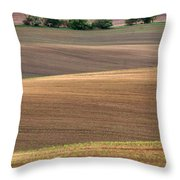 Autumn Fields Of Moravia Throw Pillow