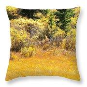 Autumn Fire In The Grass Throw Pillow