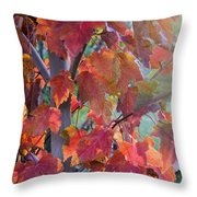 Autumn Flame Throw Pillow by Dana Moyer