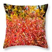 Autumn Flames Throw Pillow