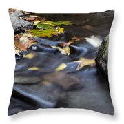 Autumn Flow Throw Pillow by Andrew Pacheco