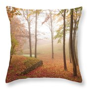 Autumn Fog Throw Pillow