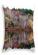 Autumn Foliage River Reflection Throw Pillow
