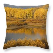 Autumn Foliage Surrounds A Pool In The Throw Pillow by David Ponton