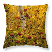 Autumn Forest Colors Throw Pillow