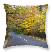 Autumn Forest Road Throw Pillow