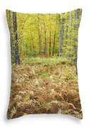 Autumn Forest - White Mountains New Hampshire Throw Pillow