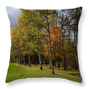 Autumn Forests And Fields Throw Pillow
