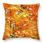 Autumn Fury Throw Pillow