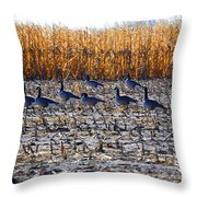 Autumn Geometry By Jrr Throw Pillow