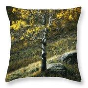 Autumn Glow - Yellowstone Throw Pillow