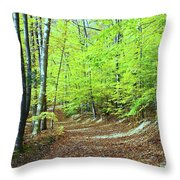 Autumn Gold 3 Throw Pillow