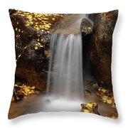 Autumn Gold And Waterfall Throw Pillow by Leland D Howard