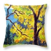 Autumn Gold Yosemite Valley Throw Pillow