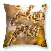 Autumn Goldenrod  Throw Pillow