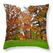 Autumn Golf Throw Pillow