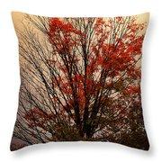 Autumn Goodbyes Throw Pillow