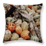Autumn Gourds 2 Throw Pillow