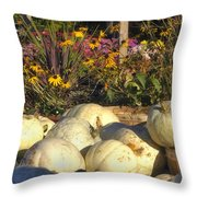 Autumn Gourds Throw Pillow