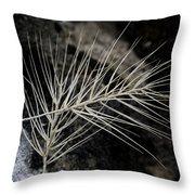 Autumn Grasses Throw Pillow