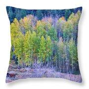 Autumn Grazing Horses Bonanza Throw Pillow by James BO  Insogna