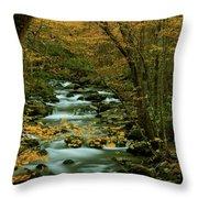 Autumn Greenbriar Cascade Throw Pillow