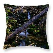 Autumn Greens Throw Pillow