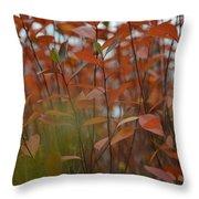 Autumn Harmony 3 Throw Pillow