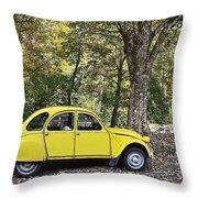 Autumn Harmony Throw Pillow