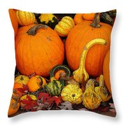 Autumn Harvest 5 Throw Pillow