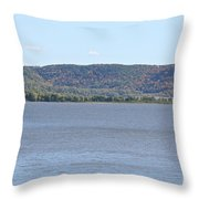 Autumn Haze Throw Pillow