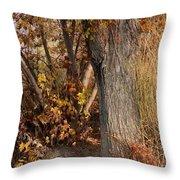 Autumn Hideaway Throw Pillow