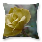 Autumn Highlights Throw Pillow by Kelly Rader