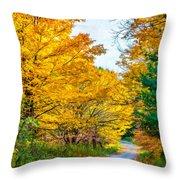 Autumn Hike - Paint Throw Pillow