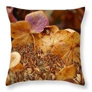 Autumn Hydrangeas V Throw Pillow