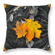 Autumn In Color Throw Pillow