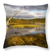 Autumn In Finland Near Inari Throw Pillow