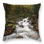 Franconia Notch In Autumn  Throw Pillow