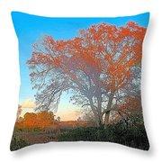 Autumn In Georgia Throw Pillow